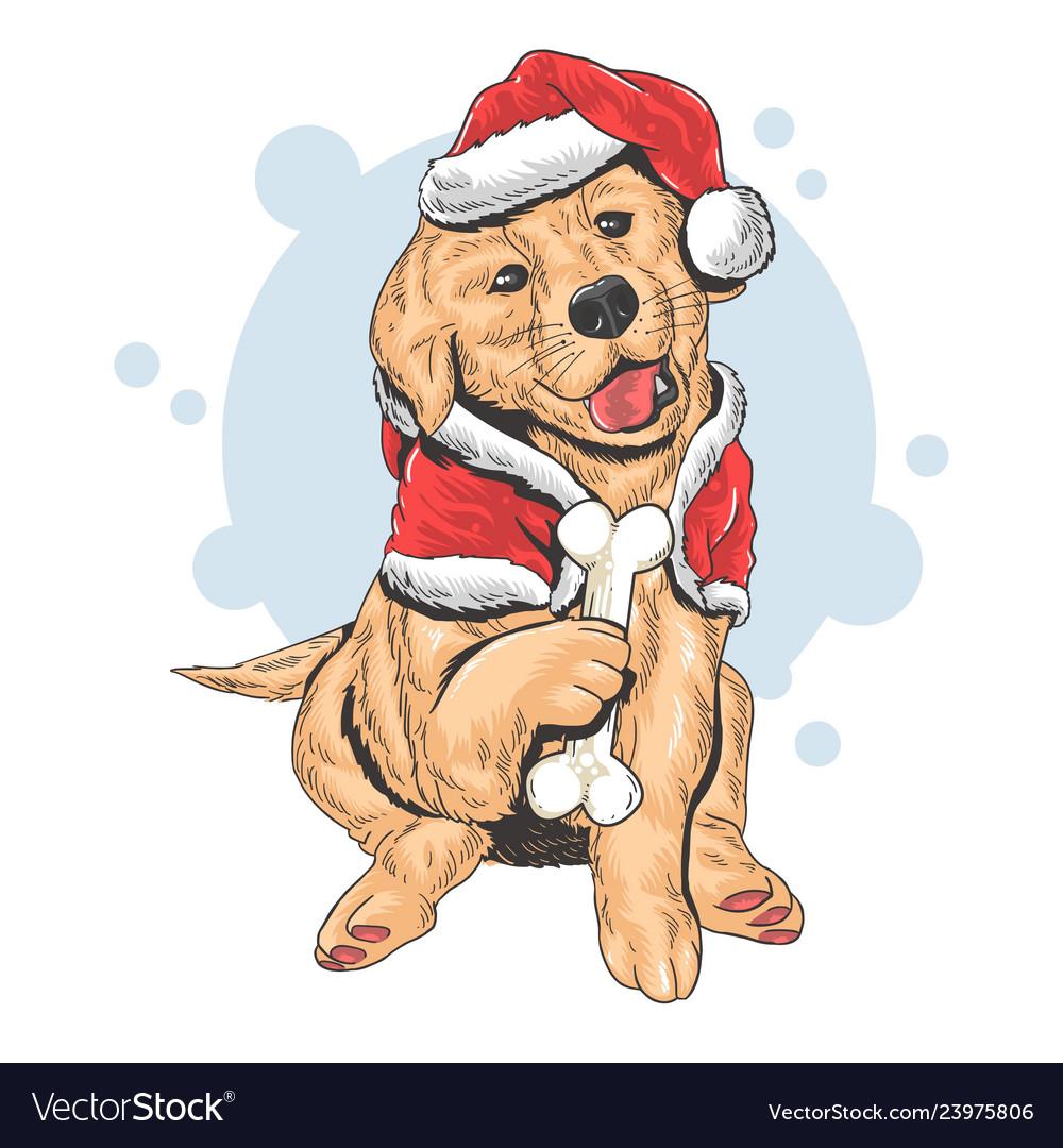 Christmas cute puppy santa claus