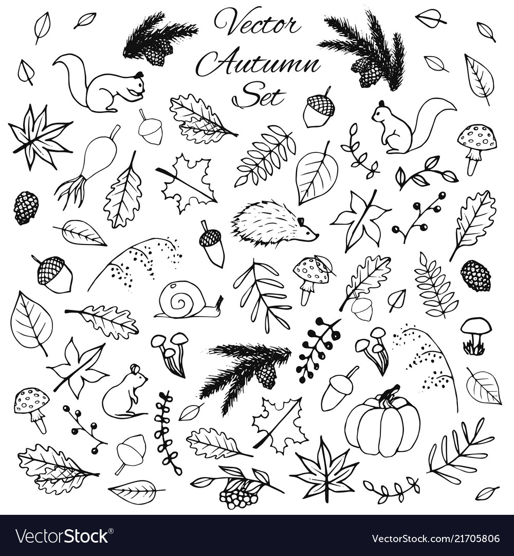 Hand drawn set autumn leaves animals acorns