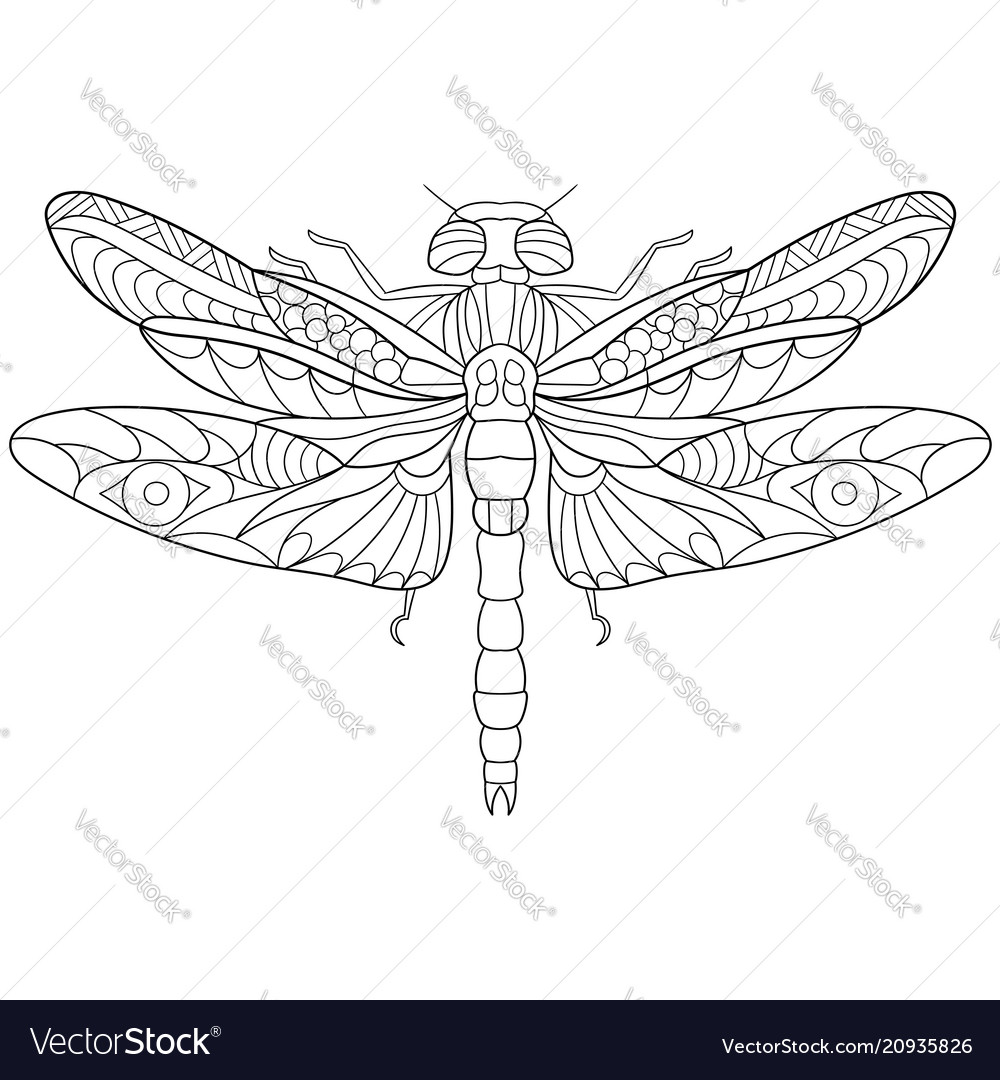 Dragonfly coloring page Royalty Free Vector Image