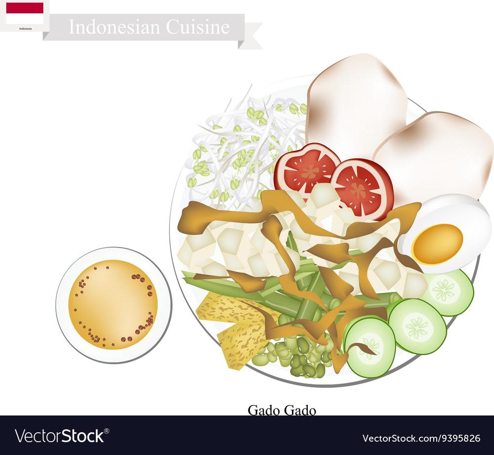 Gado Gado or Indonesian Salad with Peanut Sauce vector image