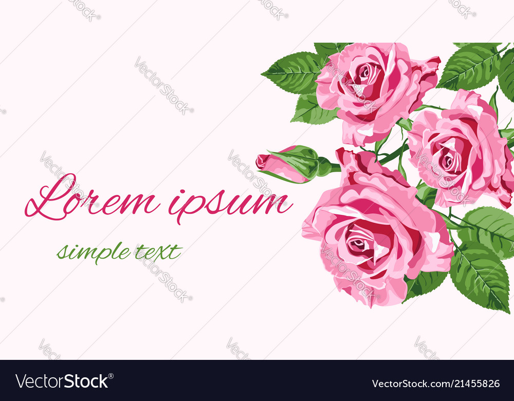 Greeting card with pink roses place for text