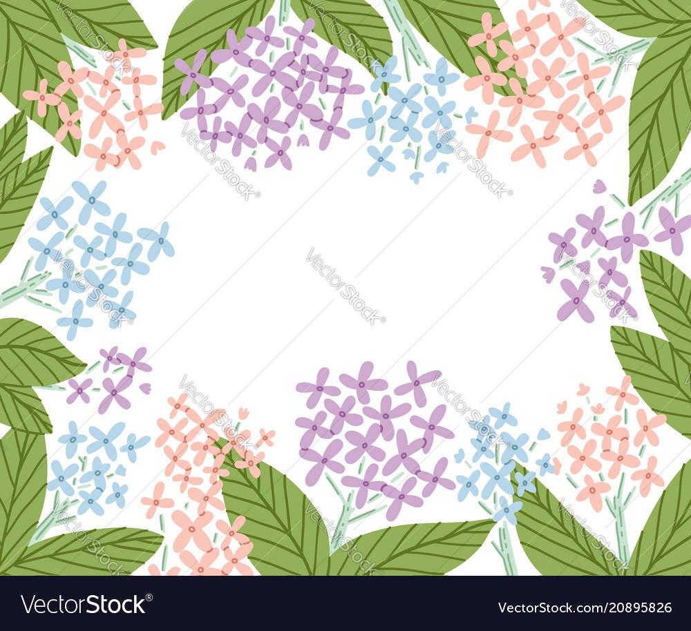 Hydrangea flowers frame