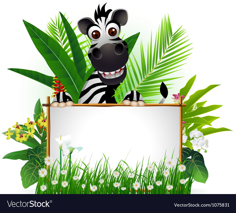 Funny zebra with blank sign and tropical forest