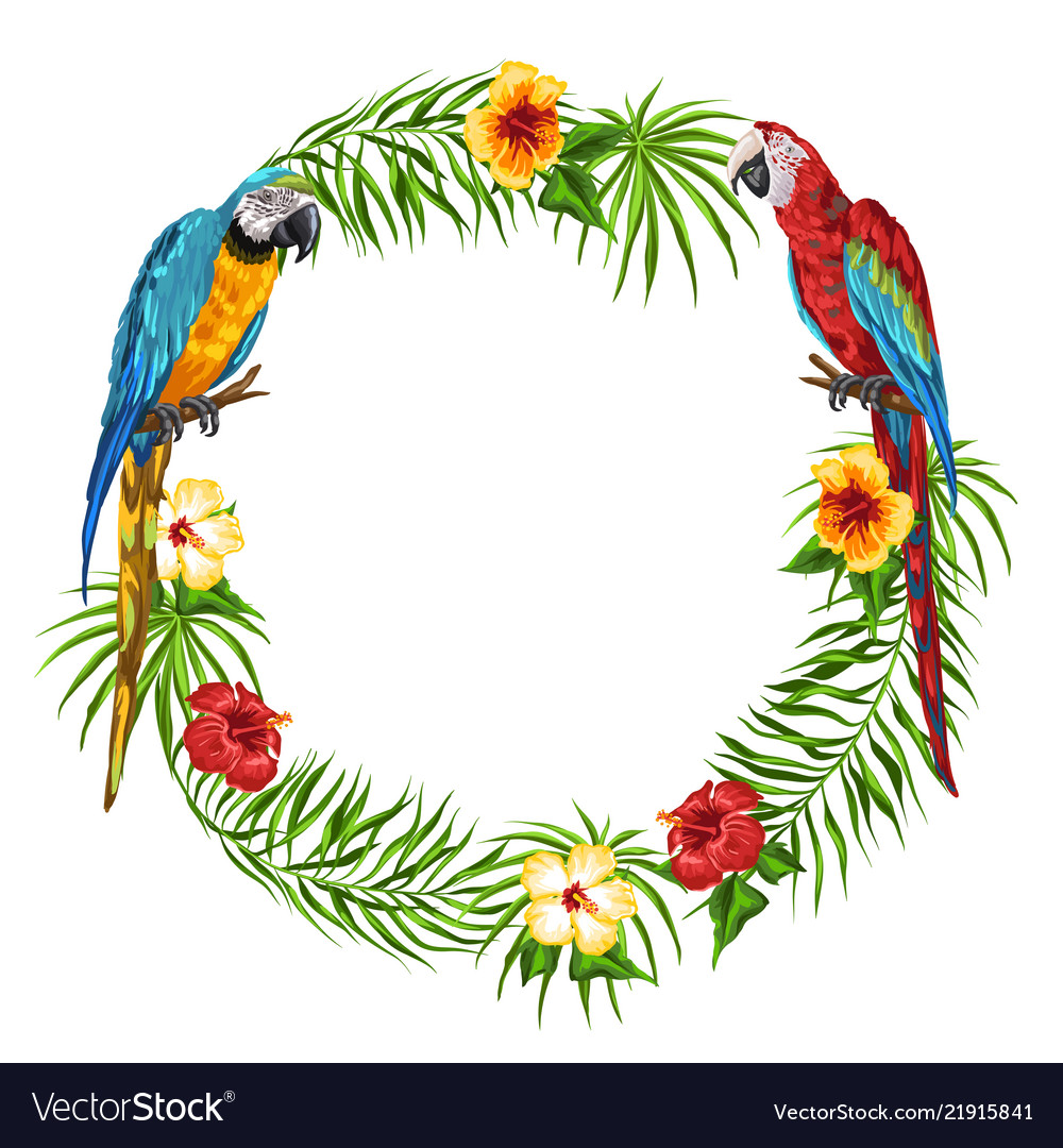 Tropical frame with parrots