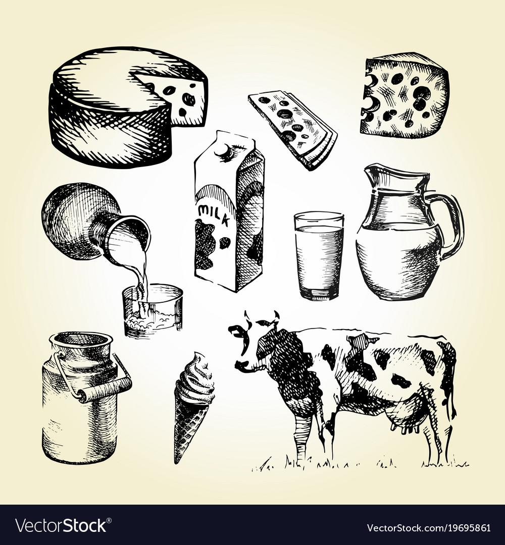 Milk Draw Royalty Free Vector Image Vectorstock