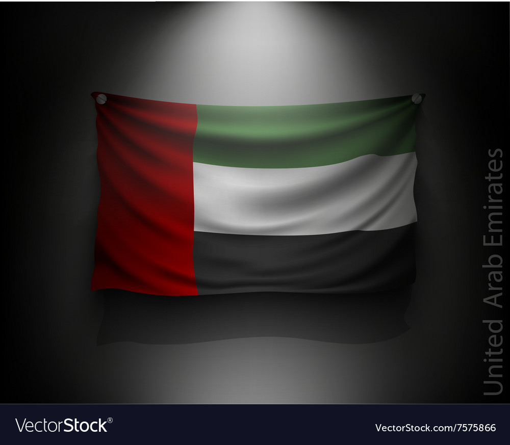 Waving flag United Arab Emirates on a dark wall