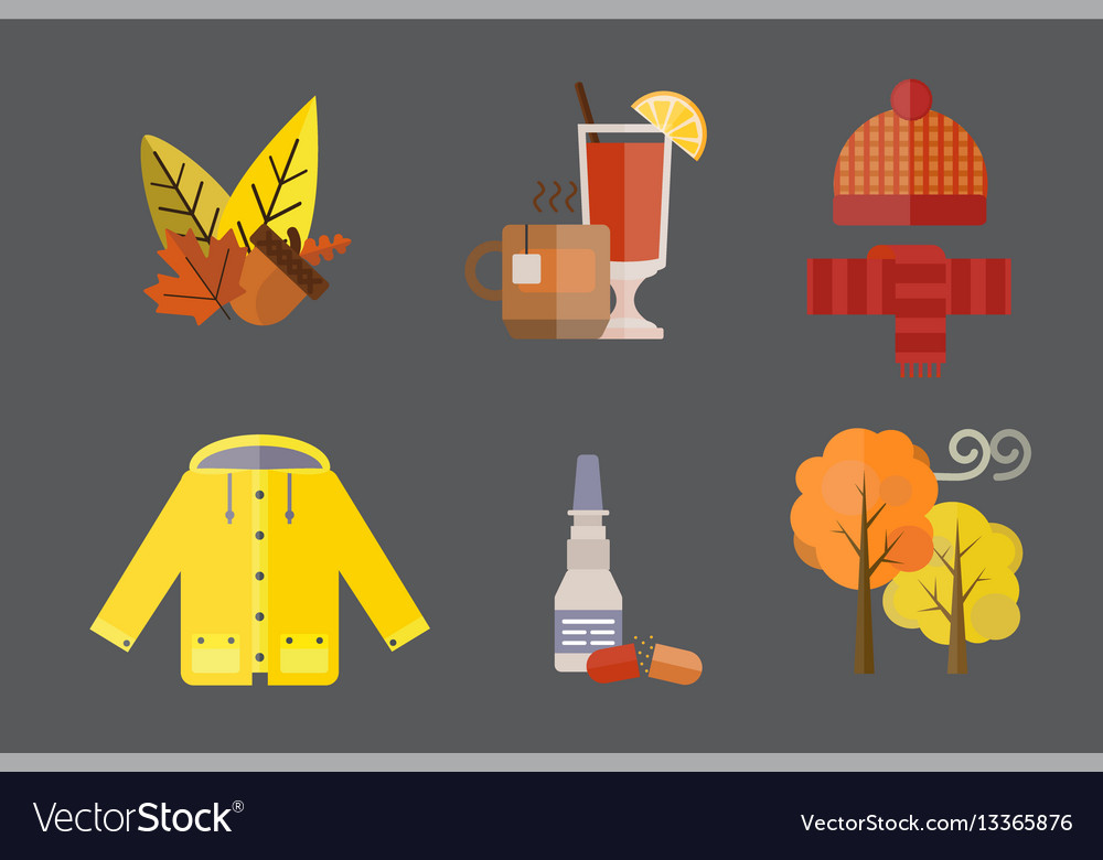 Collection of autumn clothes set items the fall vector image