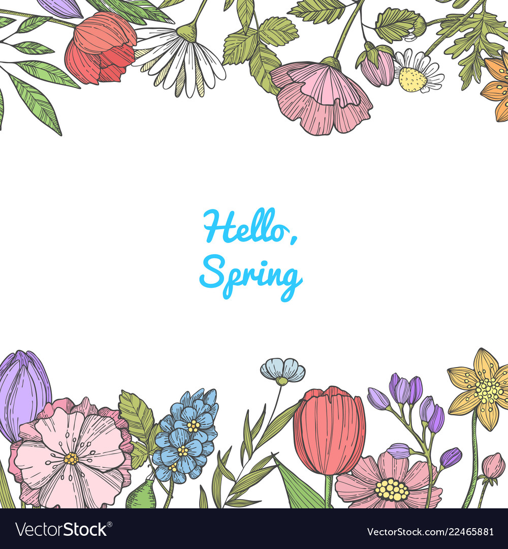 Hand drawn color flowers background banner