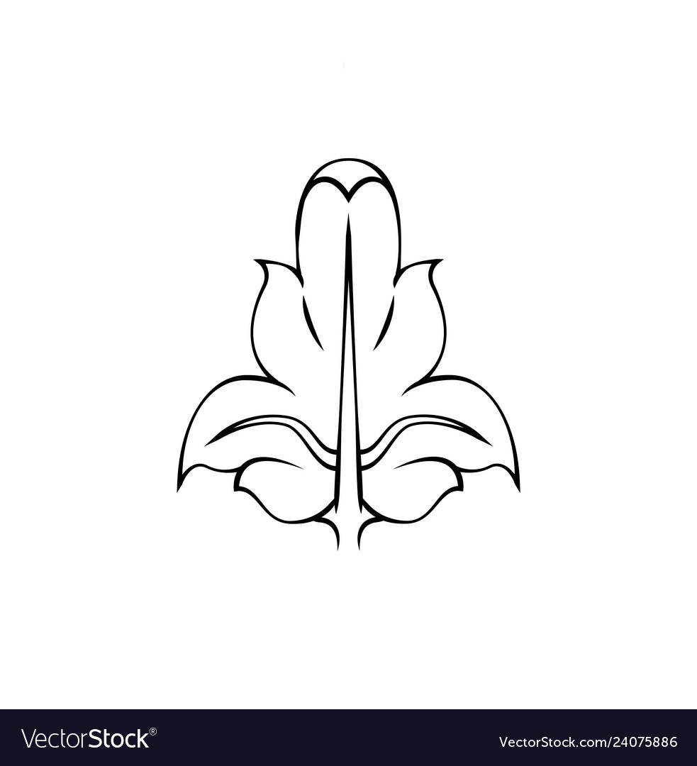 Decorative ornament with lily flower of page