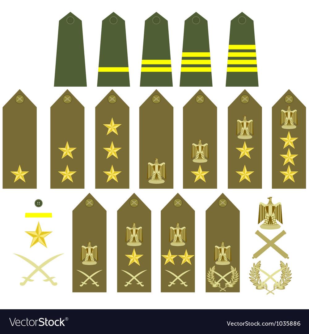 Egyptian army insignia