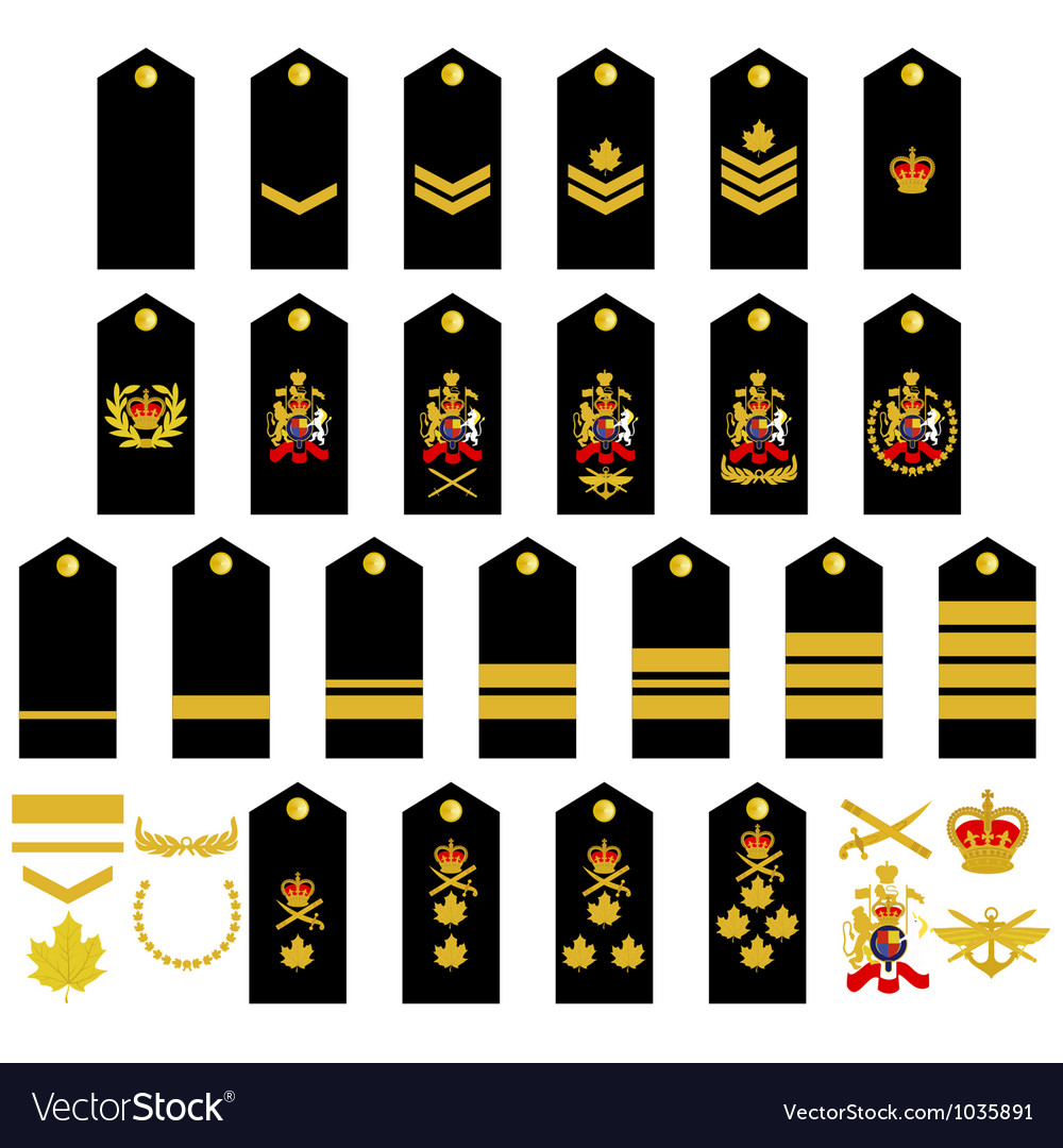 Canadian Army insignia vector image