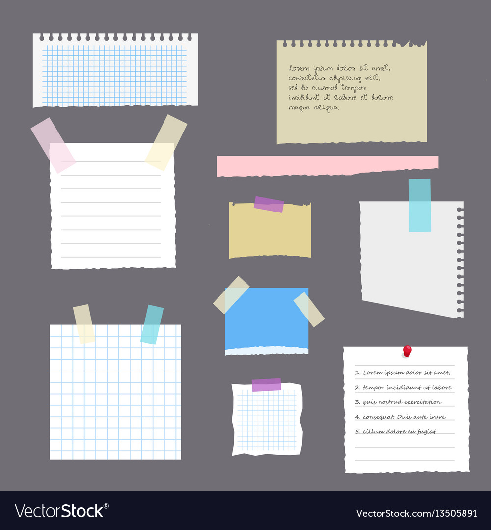 Set of torn leaves with notes from a notebook a vector image