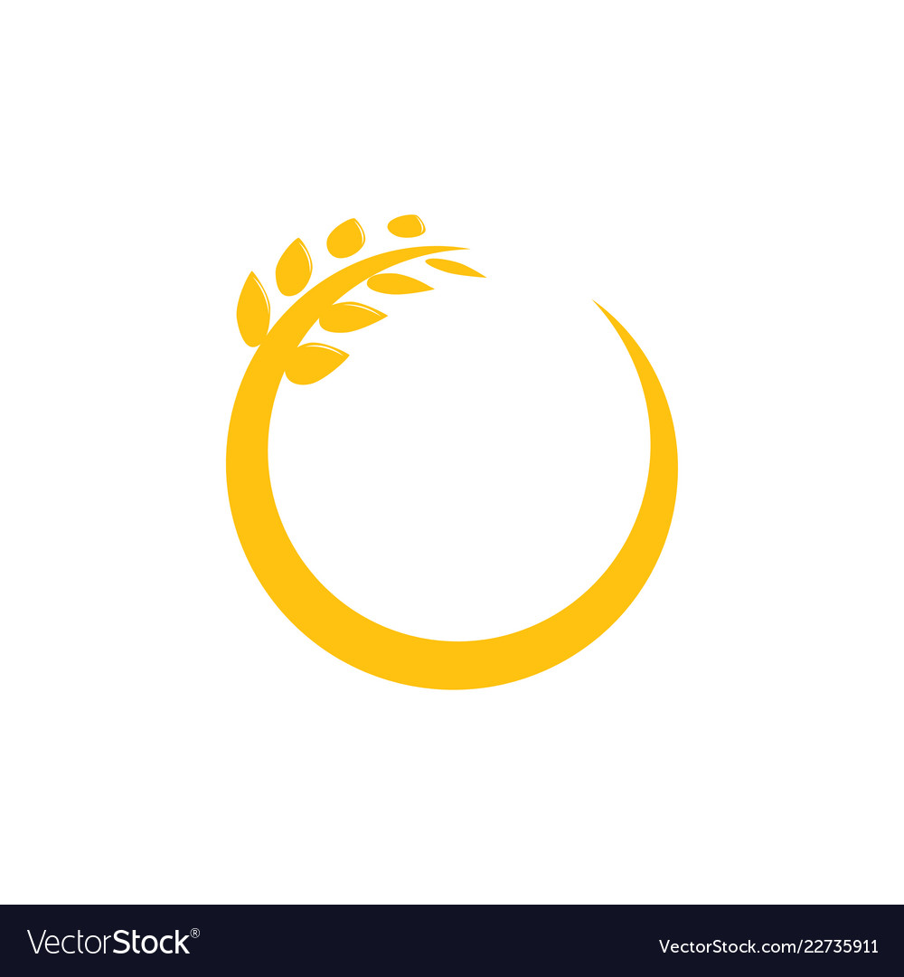 Circle wheat graphic design template