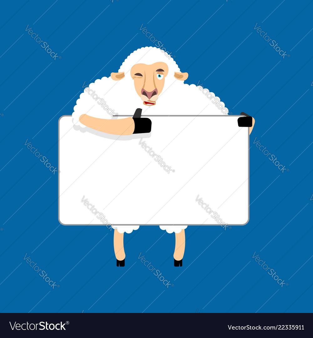 Sheep holding banner blank ewe and white blank