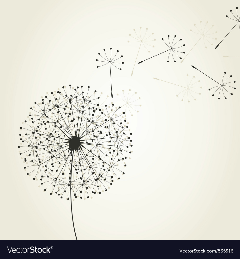 Dandelion seeds royalty free vector image vectorstock dandelion seeds vector image ccuart Image collections