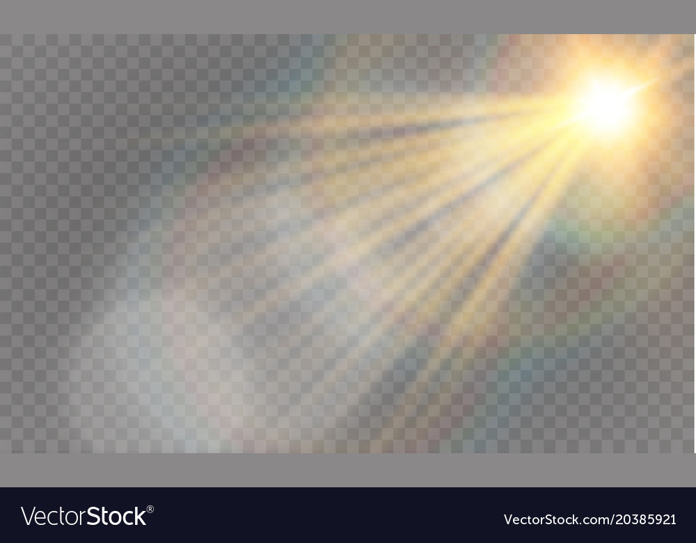 Abstract lens gold front solar flare transparent vector image