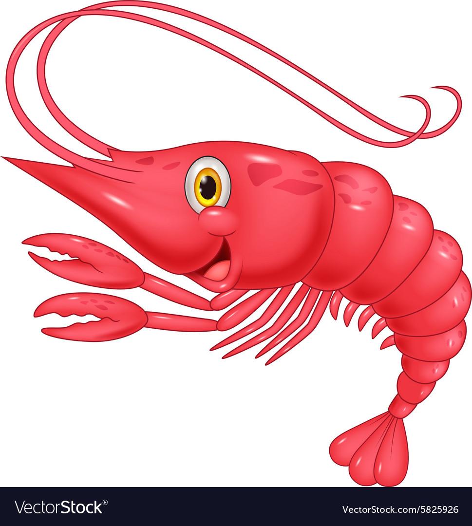 Cute shrimp cartoon vector image