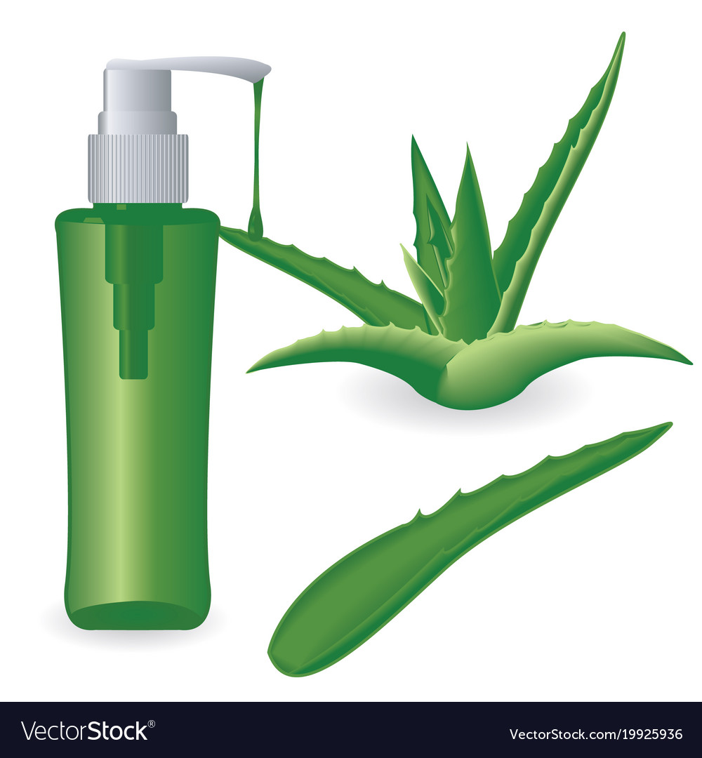 Aloe Vera Plant And A Bottle Of Gel Royalty Free Vector
