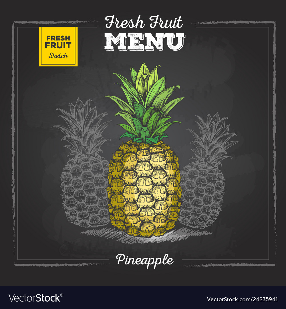 Realistic Chalk Drawing Of Tropic Fruit Pineapple