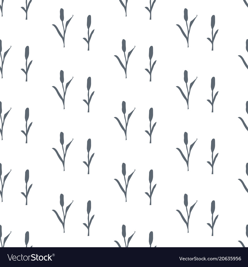 Seamless pattern with dark silhouette of reed on vector image
