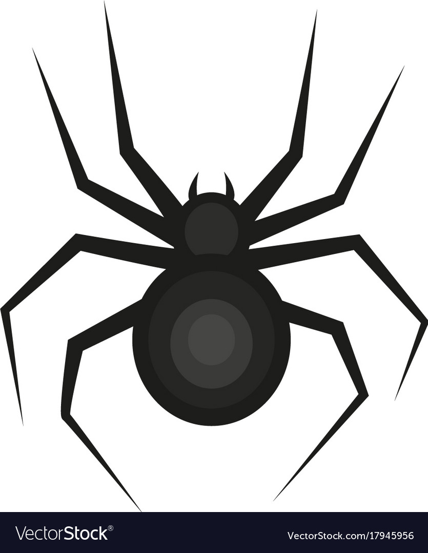 Spider icon is a flat style isolated on white