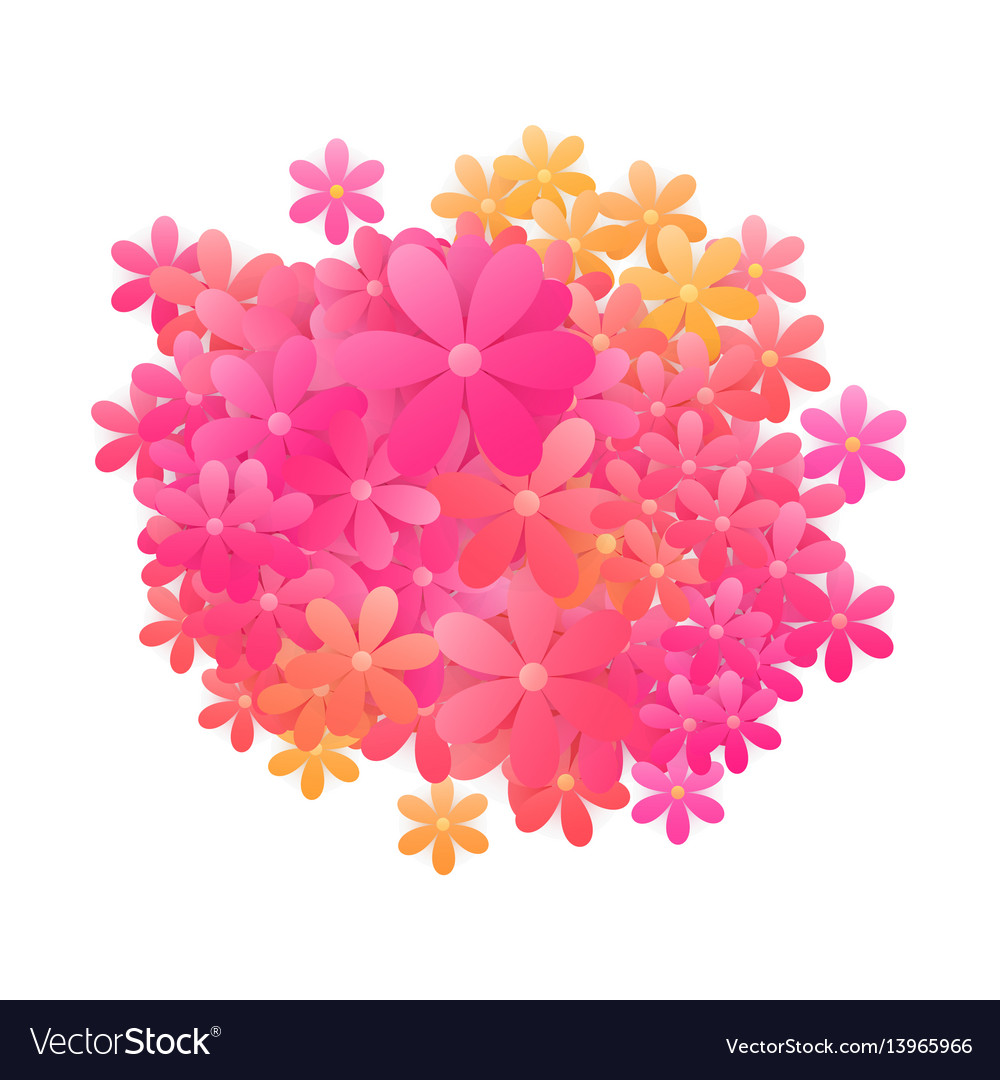 Flowers over white vector image