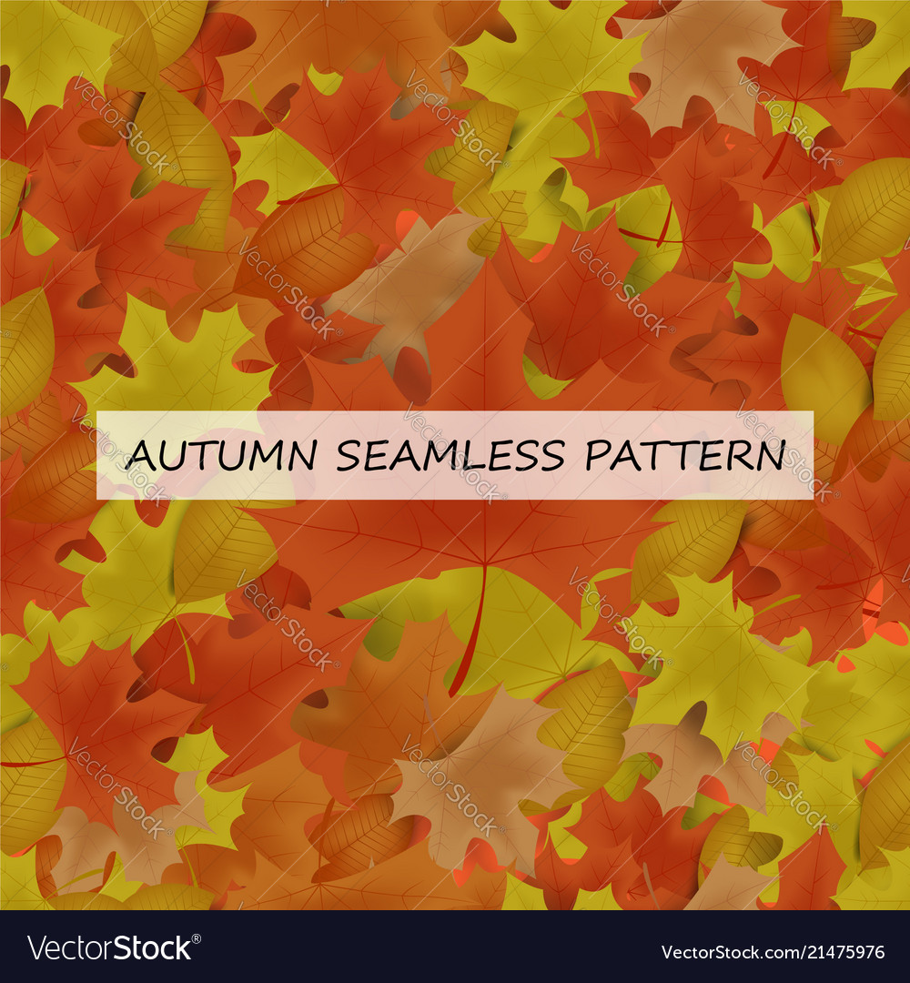 Autumn leafs seamless pattern for background