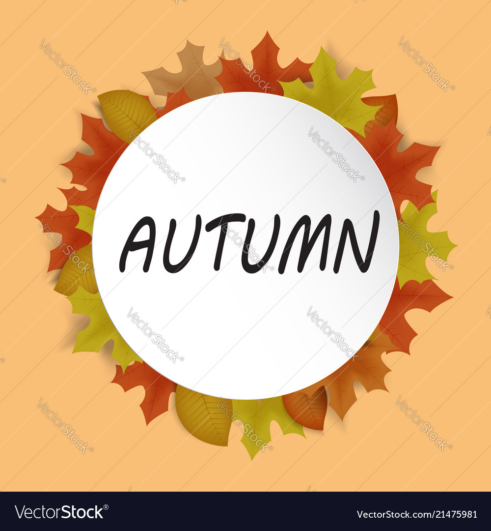 Autumn banner decor with autumn maple leaves