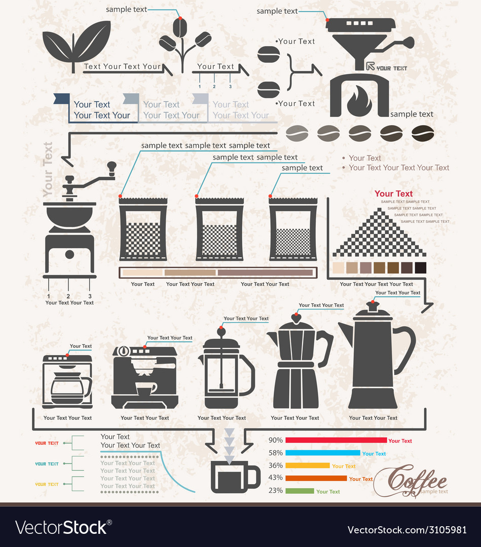coffee maker infographic elements steps royalty free vector