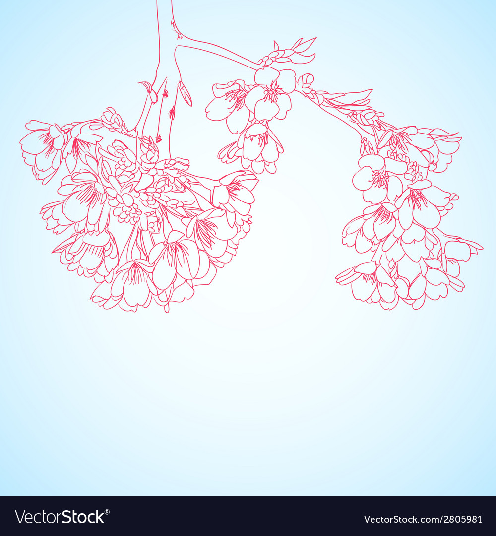 Outline cherry flowers