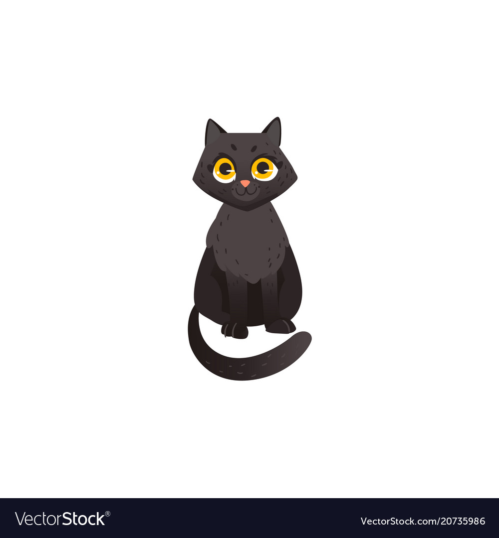 Cartoon cat animal sitting isolated vector image