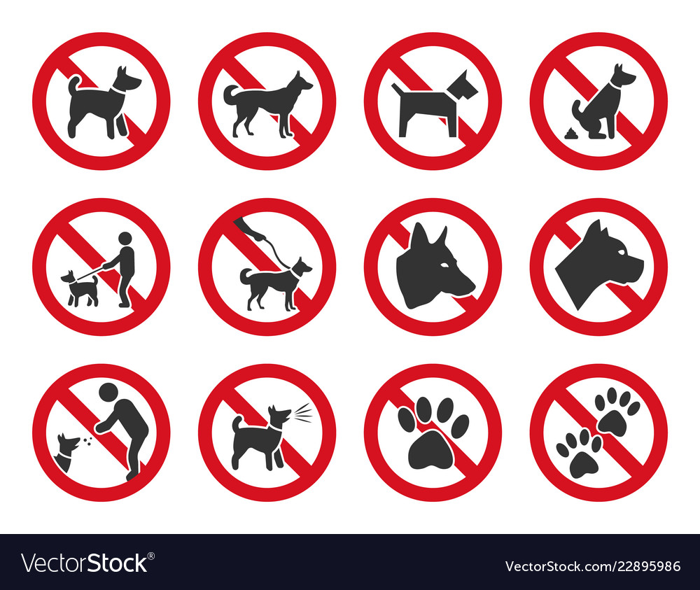 Dogs Allowed Sign
