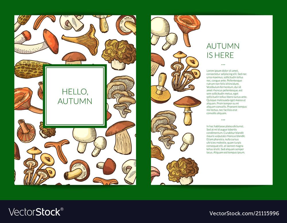 Hand drawn mushrooms card flyer or