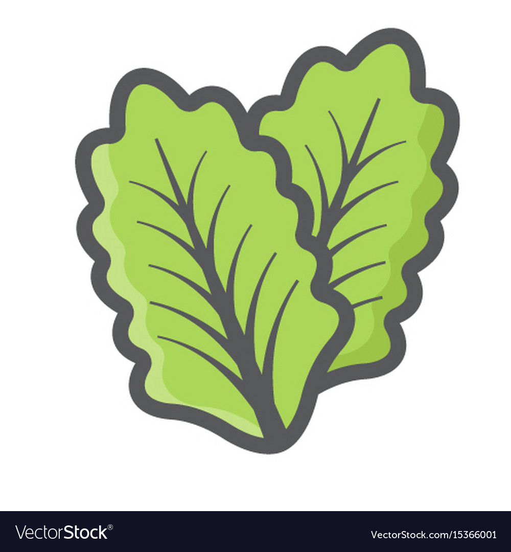 lettuce vector piece - free clipart gas - gas.trgc.it  free clipart and vector