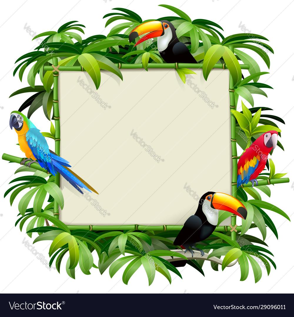 Bamboo frame with tropics birds