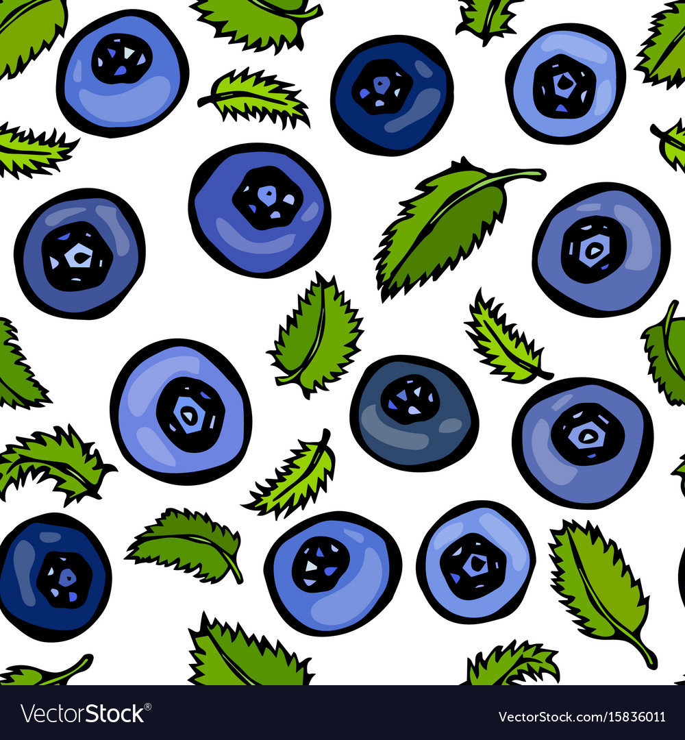 Blueberry and leaves seamless doodle style