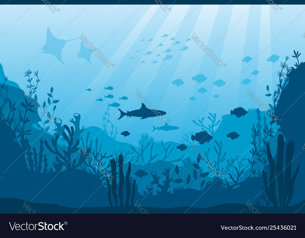 Underwater ocean fauna deep coral reef algae