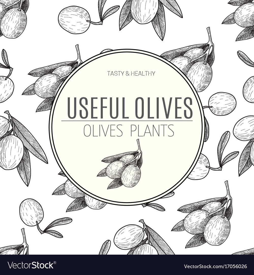 Seamless pattern black ink hand drawn olive