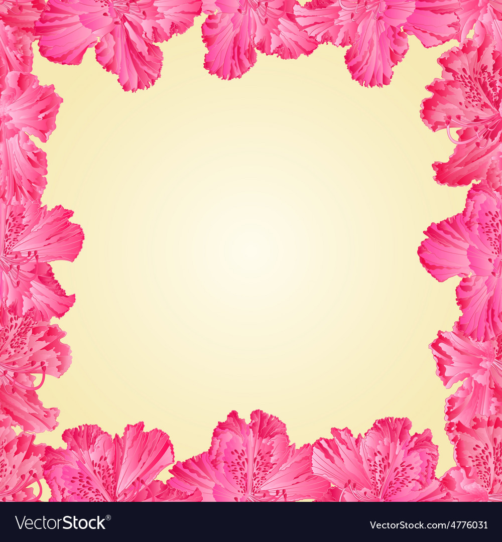 Seamless texture frame of rhododendron
