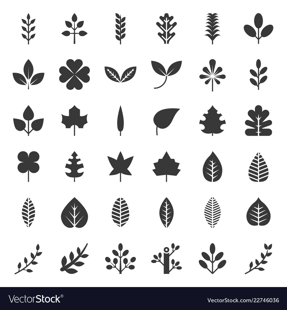 Leaves and branch icon set glyph design