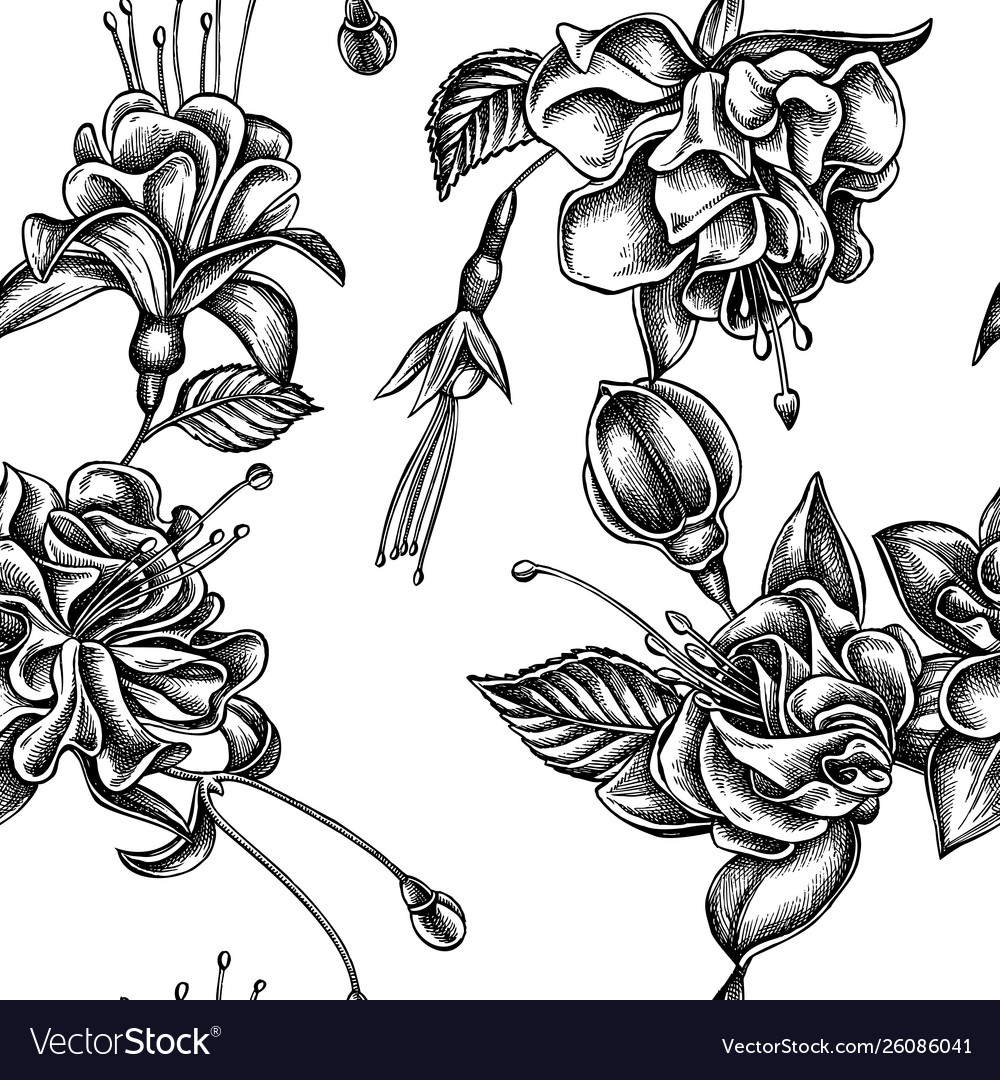Seamless pattern with black and white fuchsia
