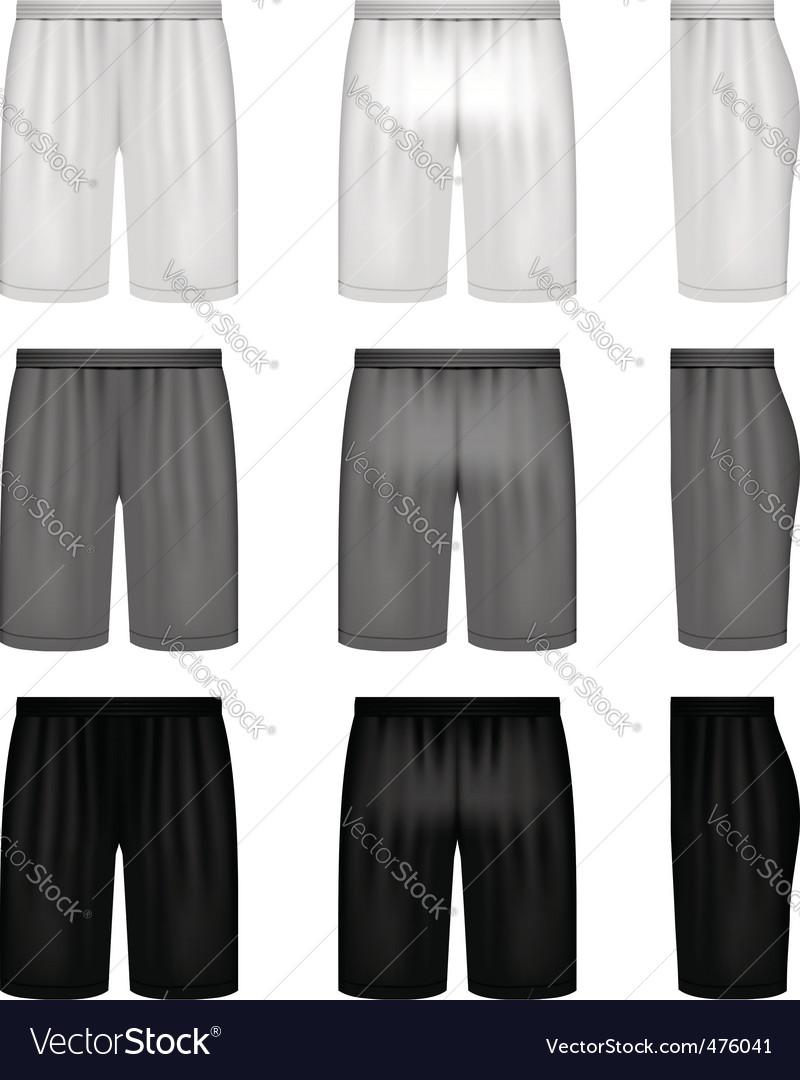 Vector shorts shades of gray vector image