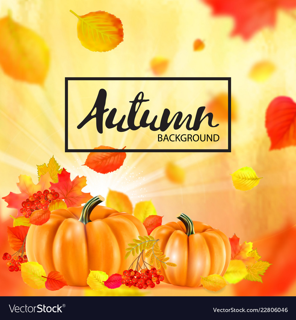 Background of orange autumn pumpkins