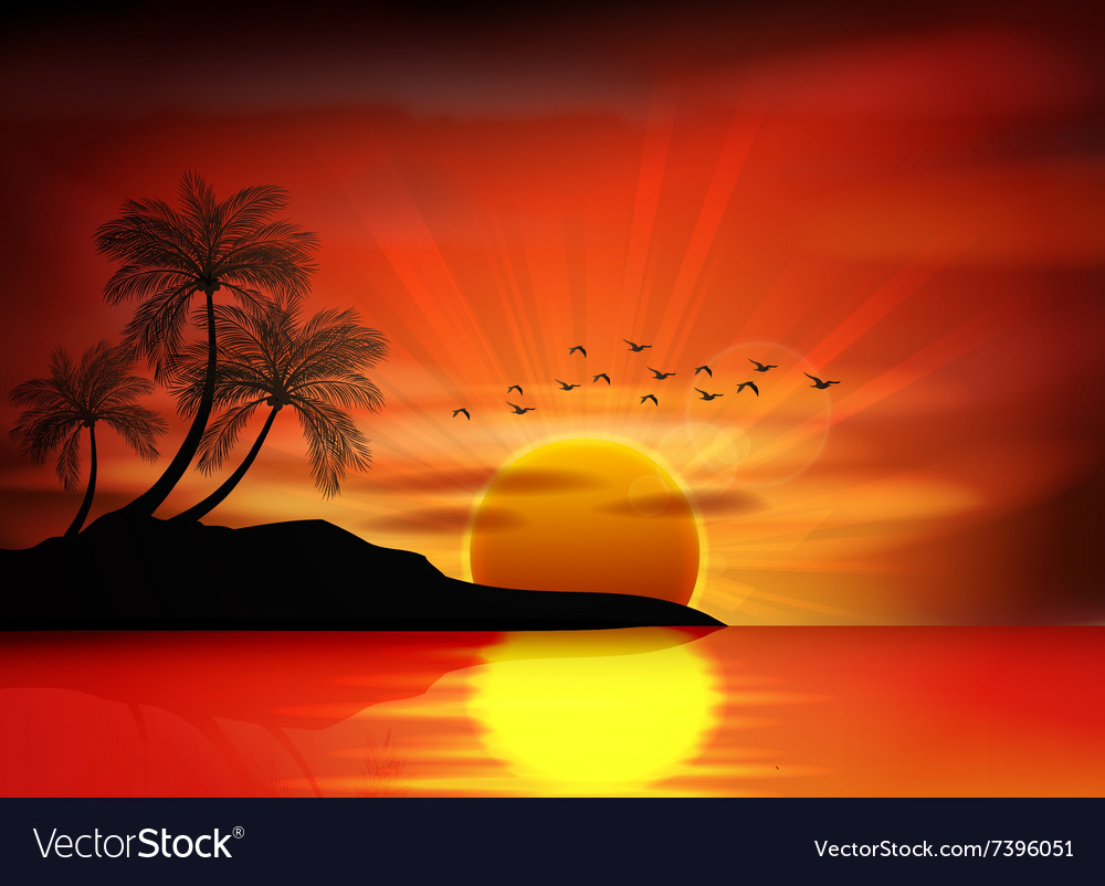 Picture of sunset on beach