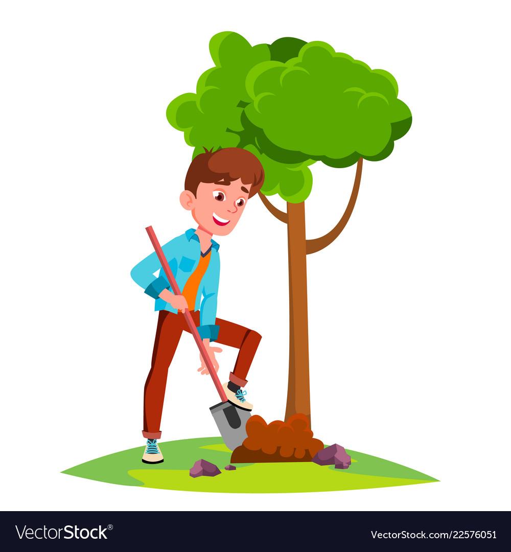 Teen boy plant a tree isolated