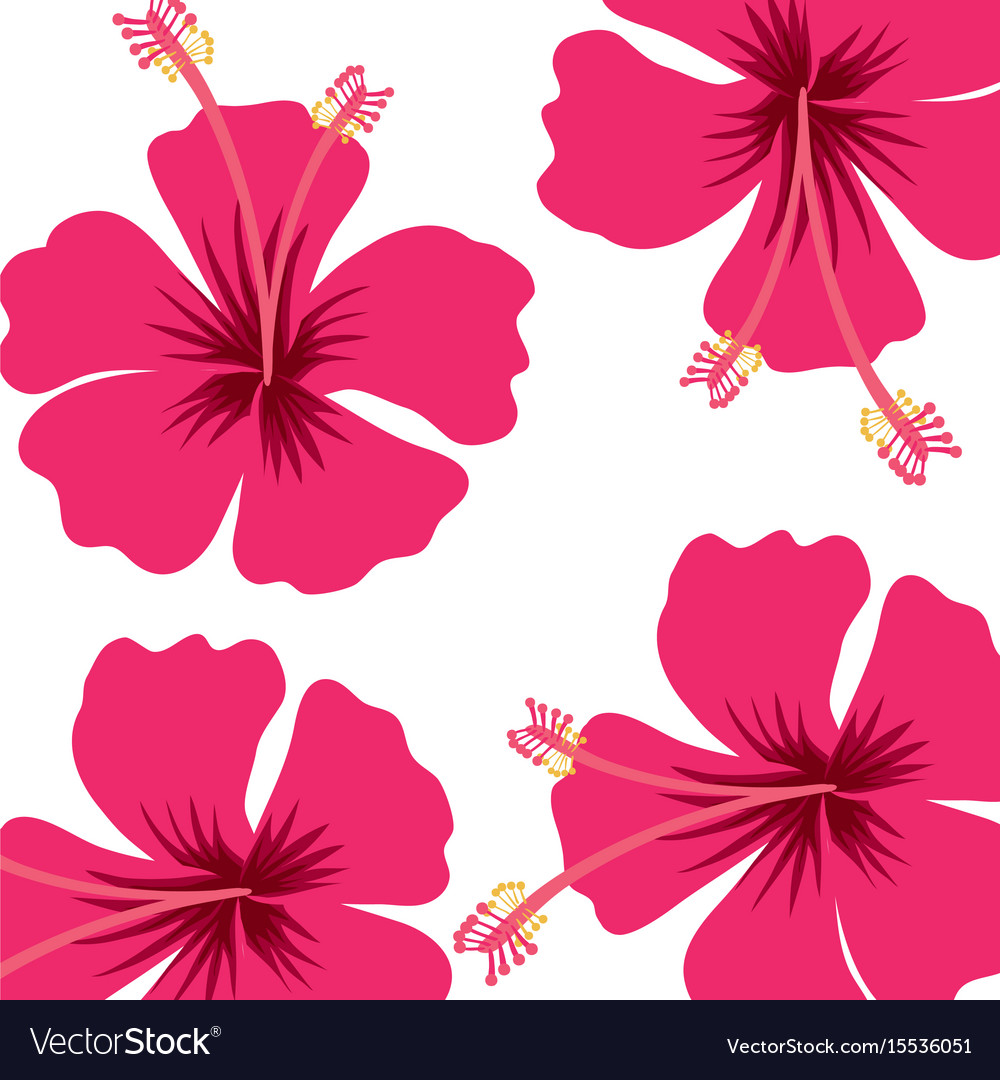 Fashion style Background Flower pattern for woman
