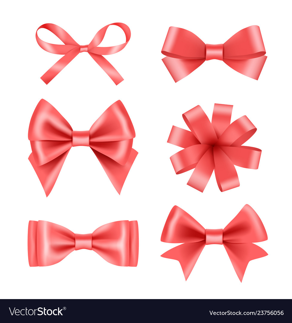 Bow with ribbons satin silk decoration for