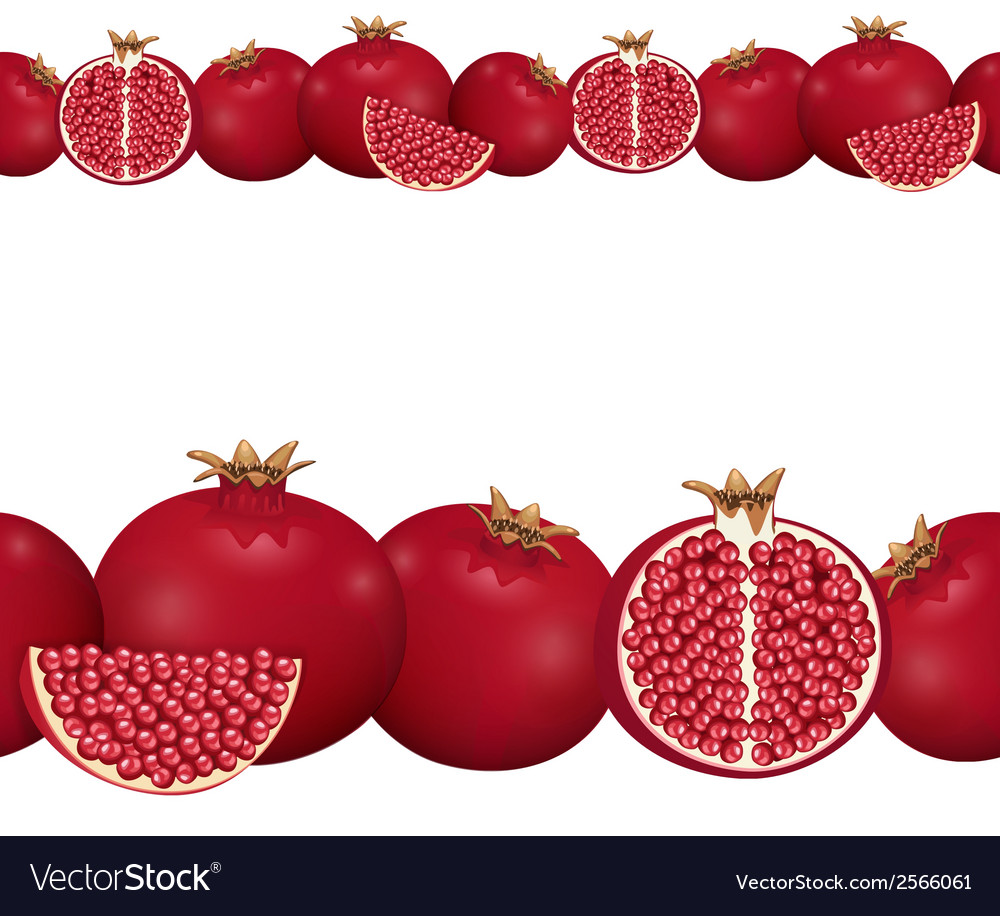 Seamless border of pomegranate