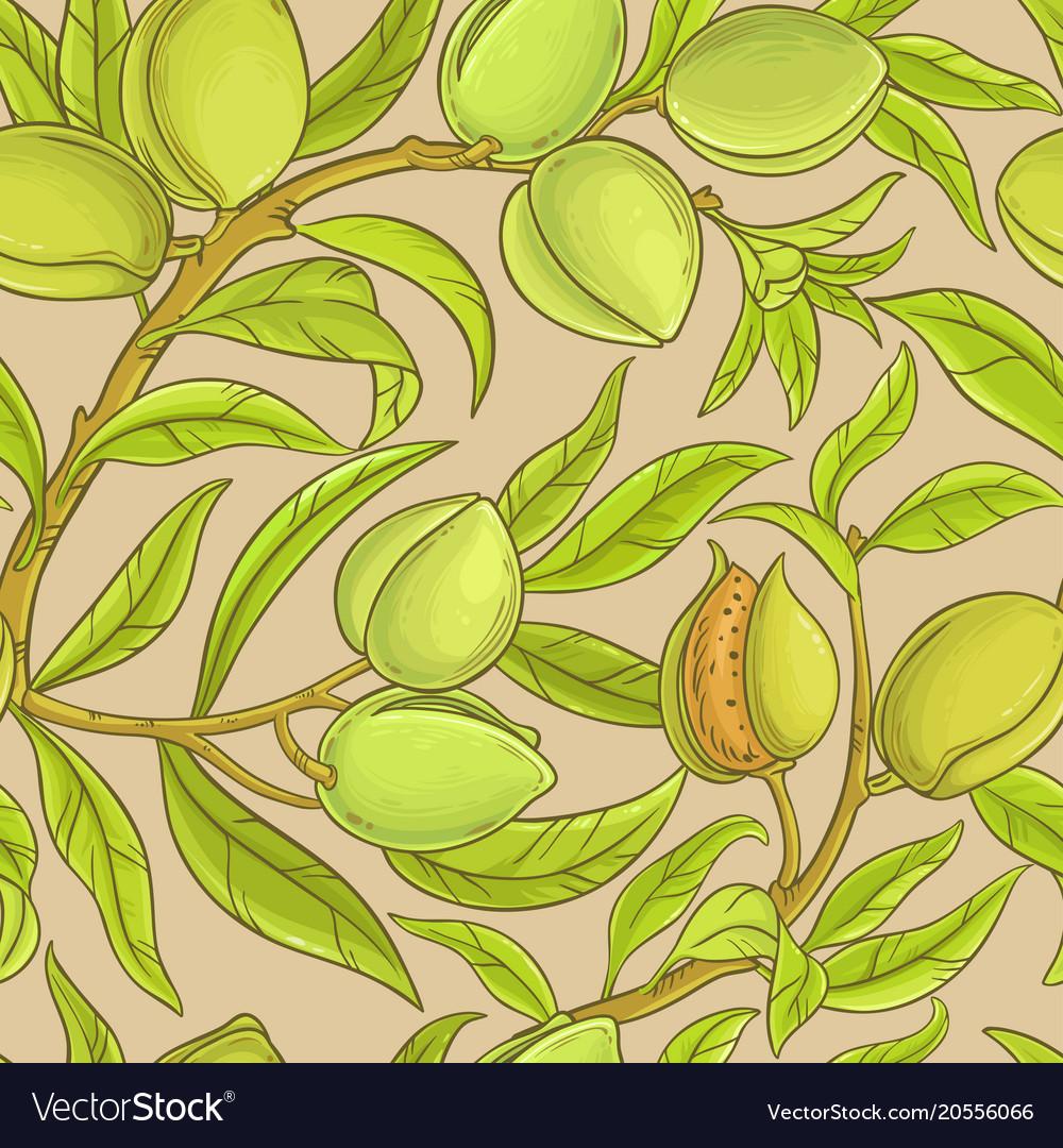 Almond pattern
