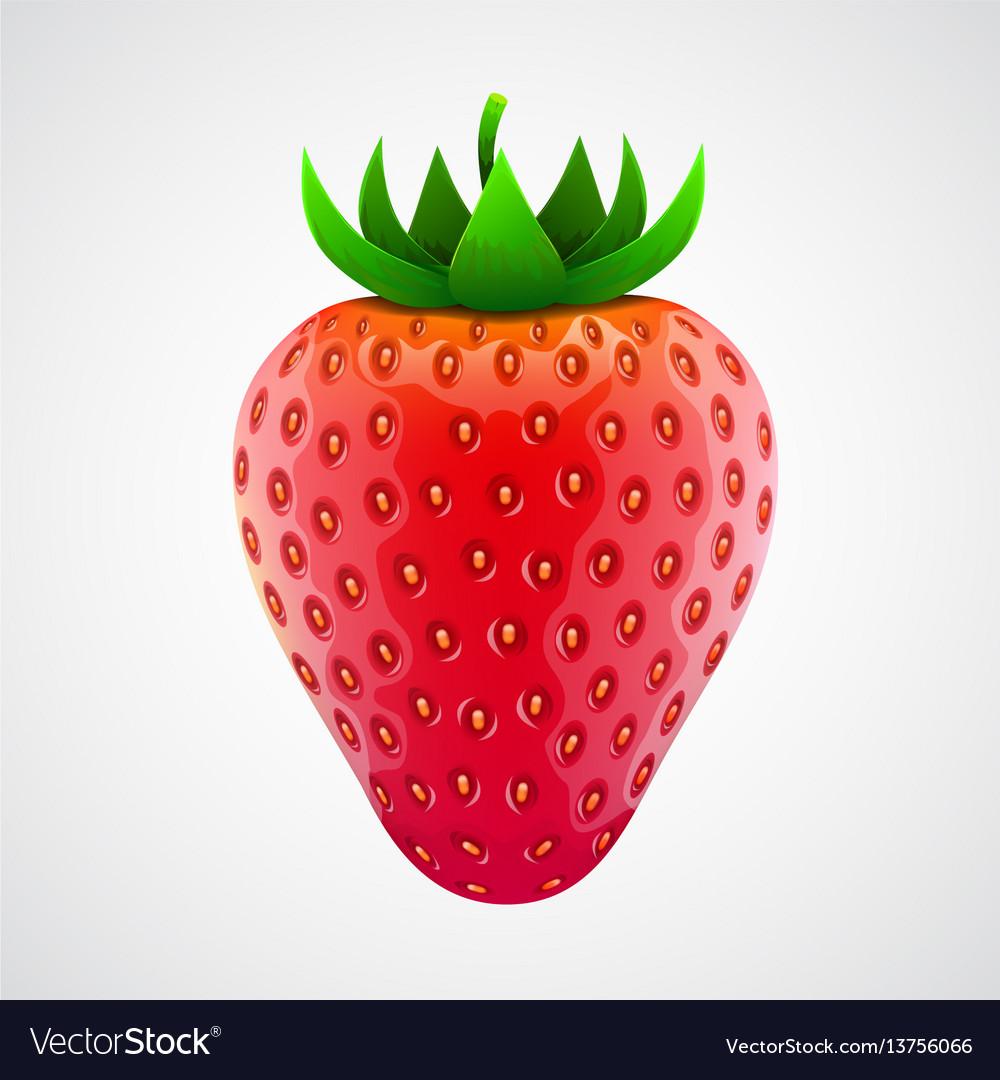 Fresh realistic strawberry isolated on white